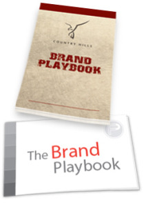 brand playbook design